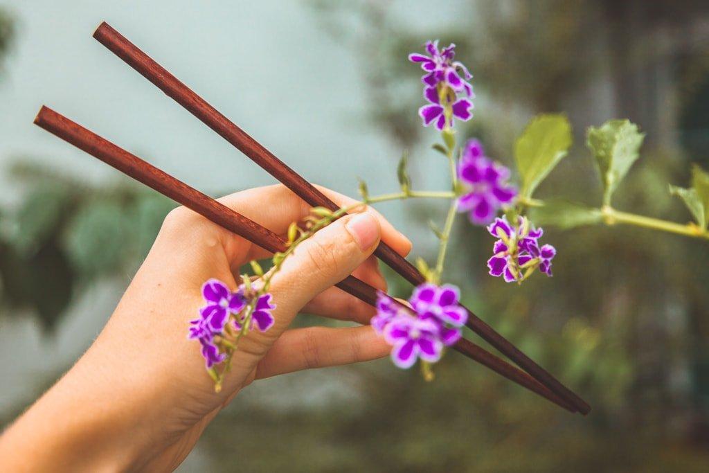 Eco-Friendly Travel Essentials - chopsticks cutlery
