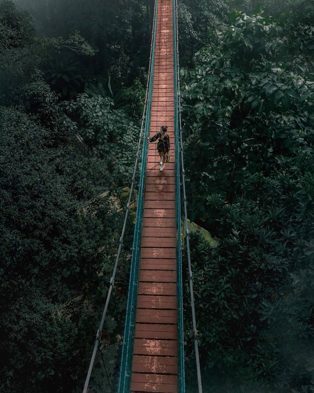 KL Eco Forest Park, Kuala Lumpur, by @blushblushtomato
