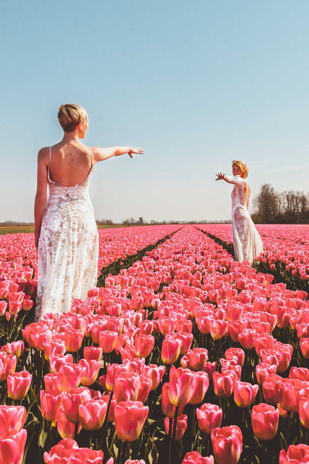 Dutch Tulip Fields, Tulpenvelden, Lesbian Wedding, two brides, Netherlands