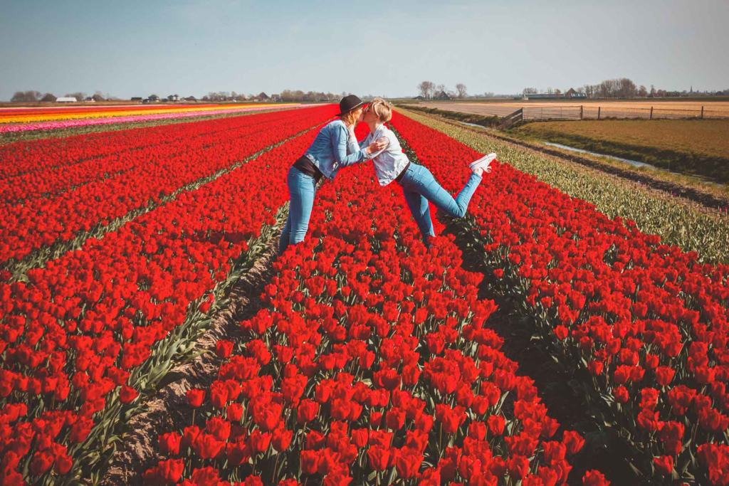 Tulip Fields, Tulpenvelden, Noord-Holland, lesbian love, Netherlands