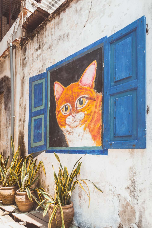Cat in the blue window, 101 lost kittens Penang