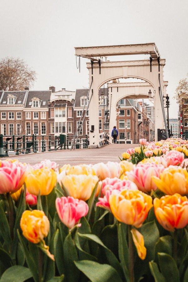 Magere brug, skinny bridge, Amsterdam