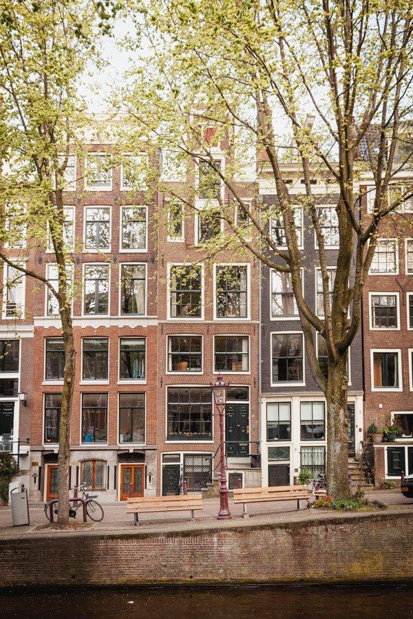 TFIOS Bench Amsterdam