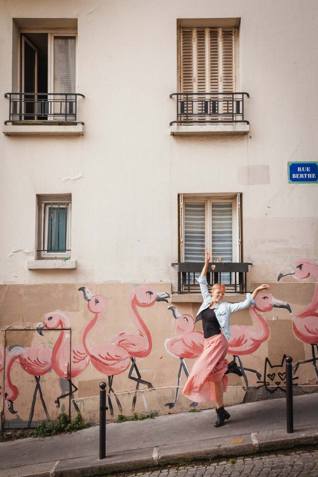 Flamingo Street Art, Montmartre, Rue Berthe, Paris