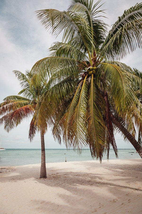 Playa Norte, Isla Mujeres, Cancun, Mexico