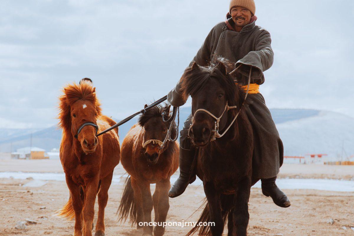 Mongolian horses horse riding Mongolia
