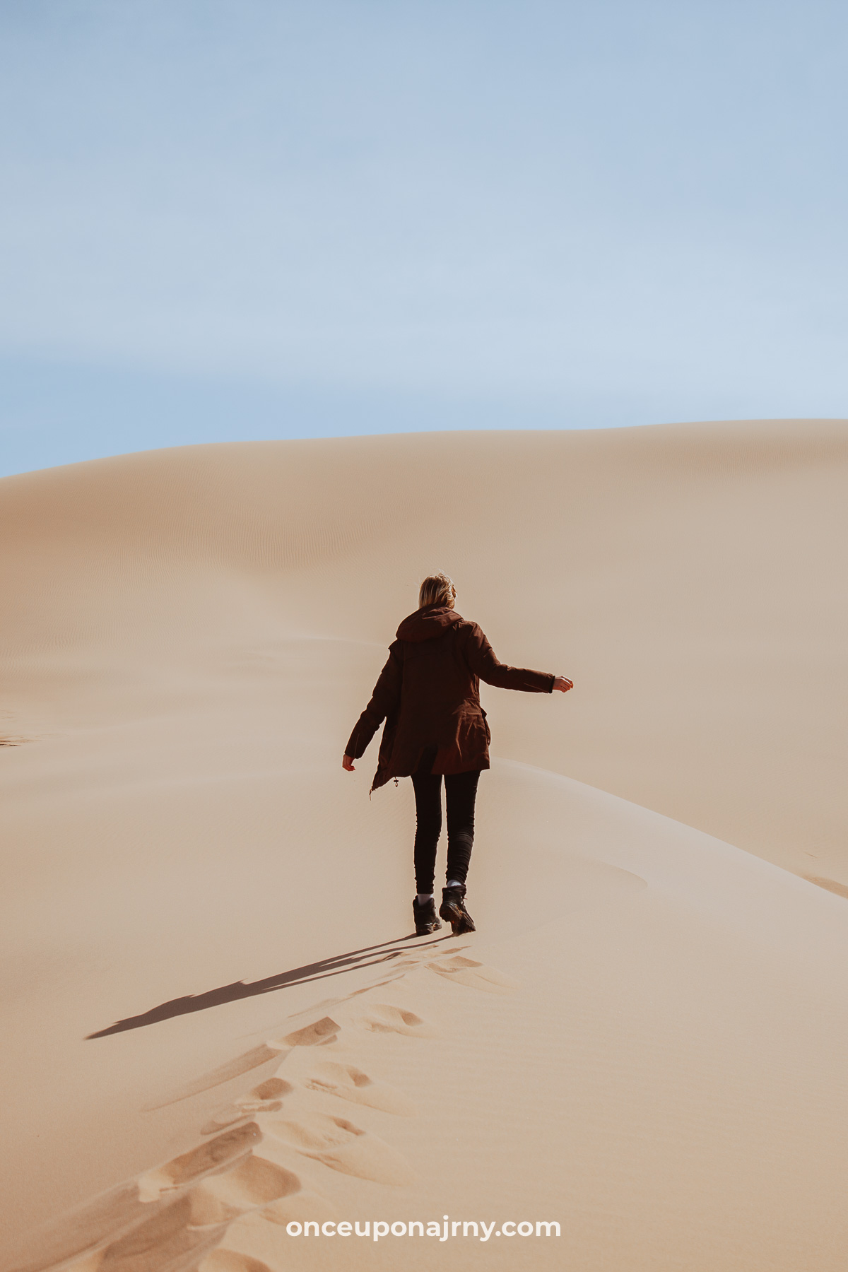 Sand Dunes of Khongoryn Els Gobi Gurvan Saikhan